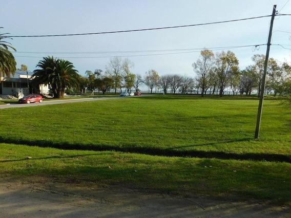 Increíble Vista Al Parque Y Laguna