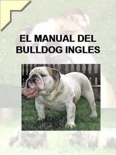 El Manual Del Bulldog Ingles Y Adiestra En Pdf 10 Libros