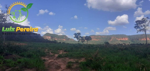 Imagem 1 de 14 de Fazenda À Venda No Alto Parnaíba - Ma De 6.377 Hectares (dupla Aptidão) - 1795