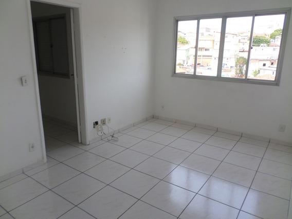Apartamento Para Aluguel, 1 Quarto, 1 Vaga, Vila Nova Cachoeirinha - São Paulo/sp - 2