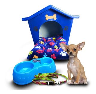 Kit Casa Térmica Para Perros Chica