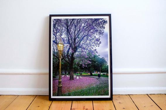 Cuadro Fotos De Autor Originales De Buenos Aires