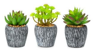 Set De Plantas Artificiales Rosanas Pm-4879883