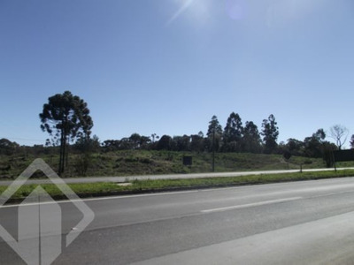Terreno - Cinquentenario - Ref: 100847 - V-100847