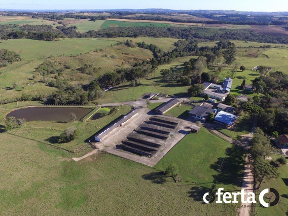 Fazenda - Centro - Ref: 429 - V-429