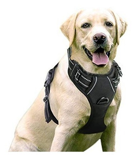 Pechera Con Arnés Para Mascotas Perro Gato Arnes Ajustable