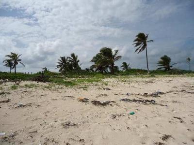 Venta De Terreno Frente Al Mar De Mahahual