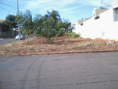 Terreno No Jardim Euphly Jales