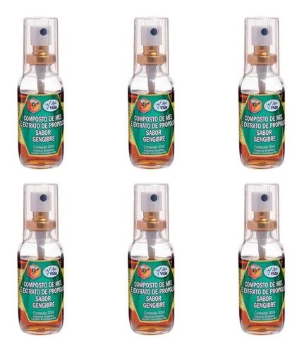 Imagem 1 de 1 de Apis Vida Própolis Gengibre Spray 30ml (kit C/06)