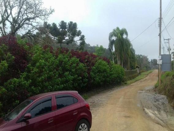 Chácara Rural À Venda, Centro, Biritiba Mirim. - Ch0013 - 33283921