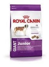 Ração Royal Canin Giant Junior Filhotes Cães Gigantes 15kg
