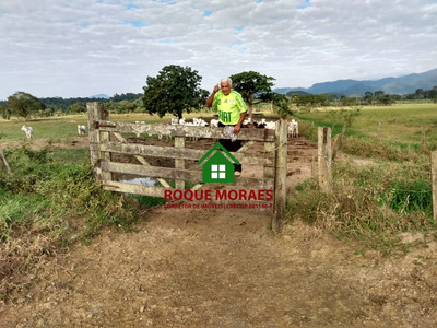Fazenda- Juquiá/ Miracatu, 200 Alqueires, Nascentes. Re:0057