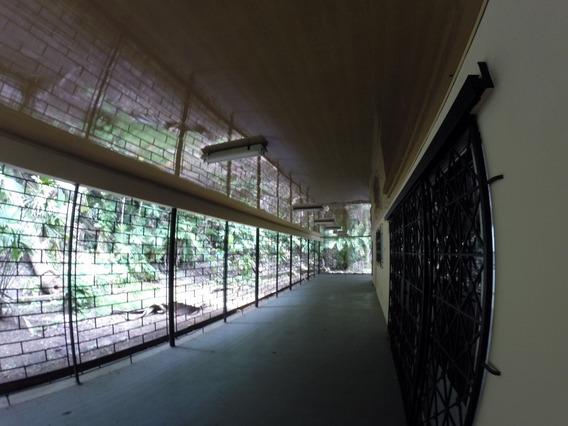 En Las Faldas Del Cerro Ancon, Se Alquila Casa 250mts2 $1300