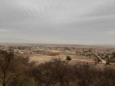 Camino Int Fundó La Laguna 15000