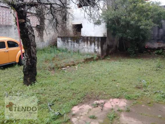 Terreno À Venda, 200 M² - Vila Rosa - São Bernardo Do Campo/sp - Te0006