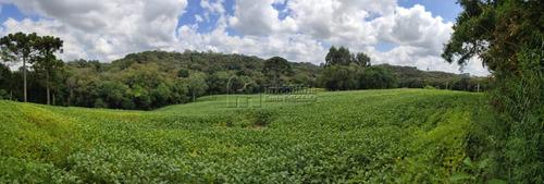 Chácara À Venda Com 15125m² Por R$ 390.000,00 No Bairro Fazendinha - Campo Largo / Pr - 205