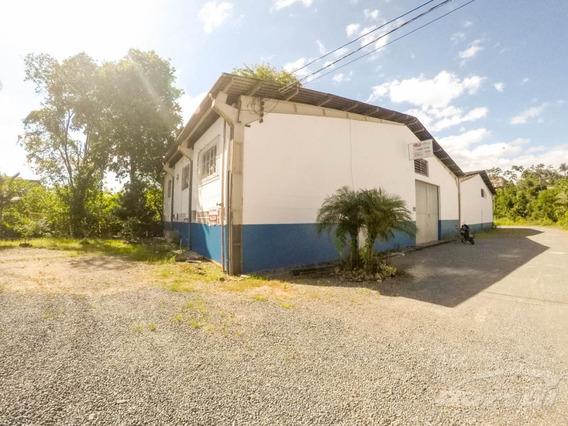 Galpão Localizado Na Região Norte, Com Aproximadamente 570m² De Área Privativa. - 3579608