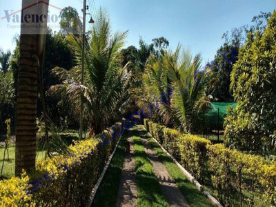Venda - Chácara - Jardim Santa Alice - Santa Bárbara D