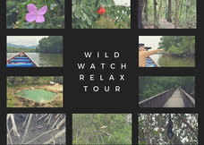 Wild Watch Relax Tour