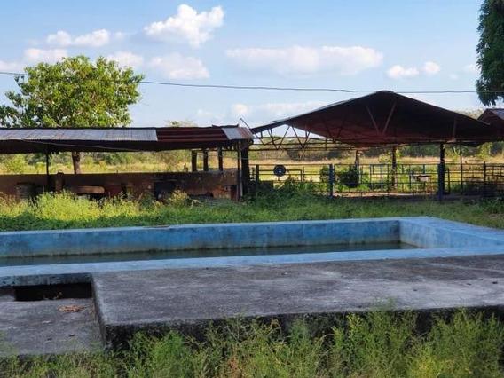 Finca En Venta En Acarigua Centro 20-11594 Rbw
