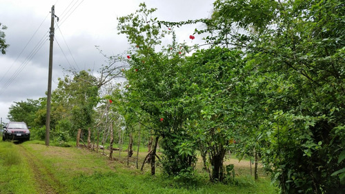Terreno En San Isidro De Peñas Blancas, San Ramón, Alajuela