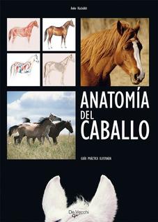 Anatomía Del Caballo - Guía Ilustrada, Rusbuldt, Vecchi