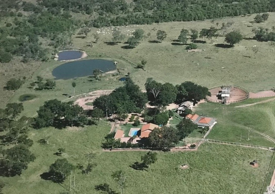 Fazenda A Venda Em Bonito -ms (pecuária) - 843