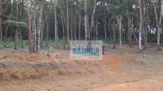 Chácara Rural À Venda, Centro, Biritiba Mirim - Ch0004. - Ch0004