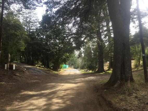 Hermoso Terreno En Bariloche, Circuito Chico, Las Cartas