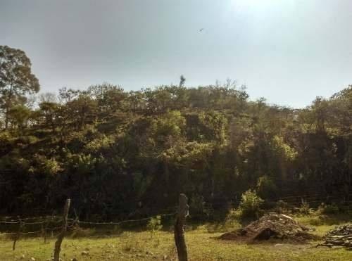 Terreno Ejidal En Venta 4,000 M2