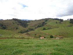 Fazenda Em Baependi Sul De Minas Com 68,2 Ha Toda Formada -bom De Água. - 2919