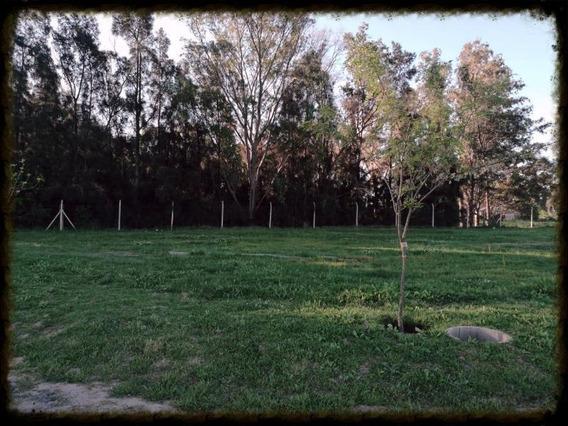 Oportunidad Santa Isabel Maschwitz Etapa 2 Lote Con Fondo Arbolado Naturaleza Pura