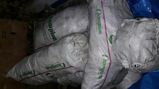 Carbón 100% Espino, Sacos De 40kg.