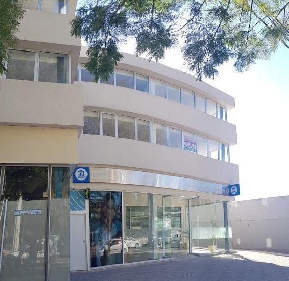 Jardín Oficinas Elias Yofre 80,130,220,440 Metros.