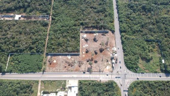 Terreno De 9,800 M2 En Renta. Fraccionamiento San Diego Cutz