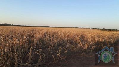 Fazenda A Venda Em Canarana - 173