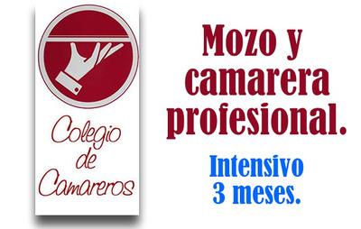 Curso: Mozo Y Camarera Profesional. Colegio De Camareros.