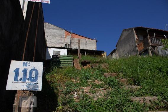 Casa Para Aluguel - Jardim Bertioga, 1 Quarto, 50 - 893046849
