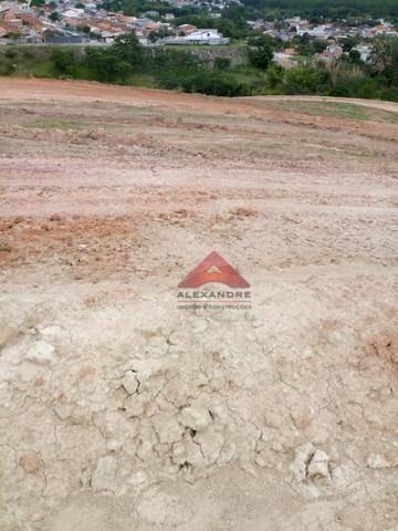 Terreno À Venda, 250 M² Por R$ 170.000,00 - Putim - São José Dos Campos/sp - Te0652