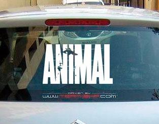 Adesivo Academia Animal Musculação Parabrisa Carro Moto