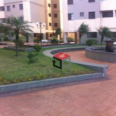 Apartamento Com 3 Dormitórios À Venda, 75 M² Por R$ 375.000 - Jardim Stella - Santo André/sp - Ap62072