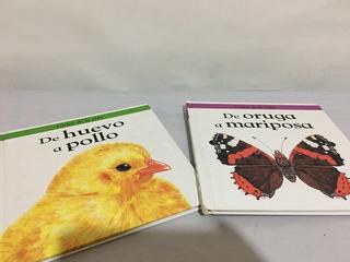 2 Libros Educativos Infantiles Animales Pollito Y Mariposa