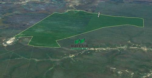 Fazenda À Venda, 70000000 M² Por R$ 12.500.000,00 - Zona Rural - Pilão Arcado/ba - Fa0041