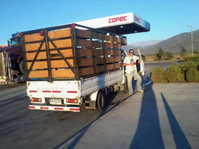 Camion H-100 Pick Up