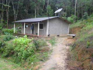 Miracatu/sitio Frente Asfalto/sede/plantio/ac Auto/ref:04917