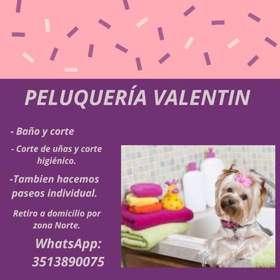 Peluquería Canina Con Retiro A Domicilio
