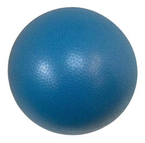 Kit C/4 Bolas Yoga Pilates Fisio Overball 25cm