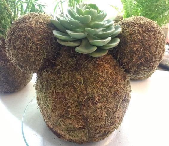 Kokedama Eco Regalo Plantas Decoracion Disney Mickey Minnie