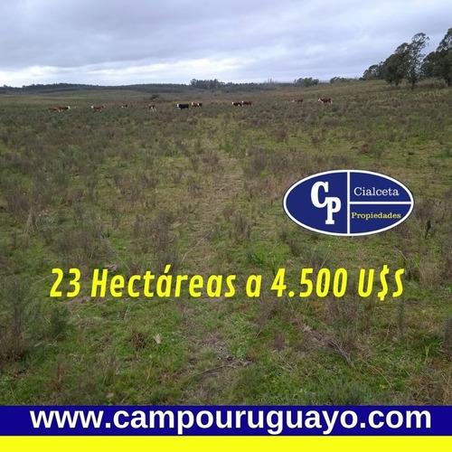 Campo De 23 Hectáreas En Canelones