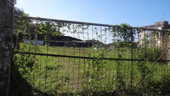 Terreno Em Mongaguá Com 4.400 Metros De Área - C5505